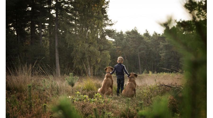 portfolio-kinderen-koolen-photography-25.jpg